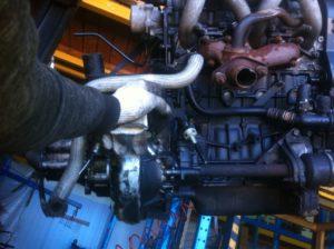 Контрактный двигатель Ситроен 1.9д WJY/DW8B DXFP6008626 Берлинго